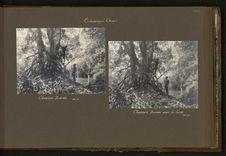 Chasseurs banda dans la forêt