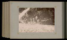 Moorea, groupe d'hommes et de chevaux à la limite des districts de Teavaro et...