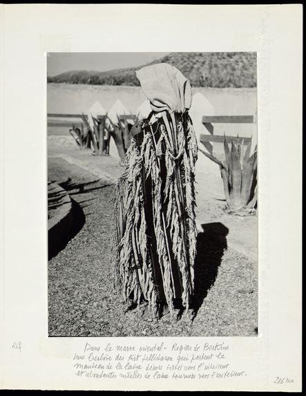 Région de Berkine. Une berbère des Aït Jellidasen qui portent le manteau de laine
