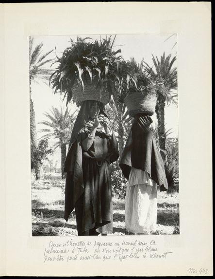 Deux silhouettes de paysannes au travail dans la palmeraie à Taba