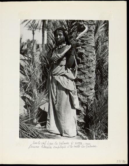 Sur le vif dans la palmeraie d'Akka, une femme harratin employée à la taille des palmiers