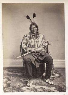Ta-Tan-Ka-Wa-Kan. Sacred Bull. Yankton