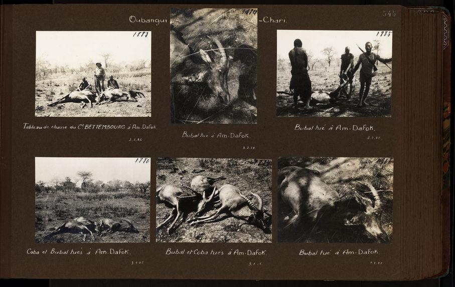 Tableau de chasse du commandant Bettembourg à Am-Dafok