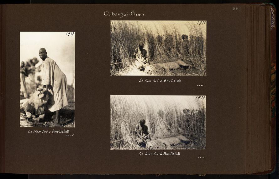 Expédition Centre Afrique, 1924 - 1925 - Volume 6