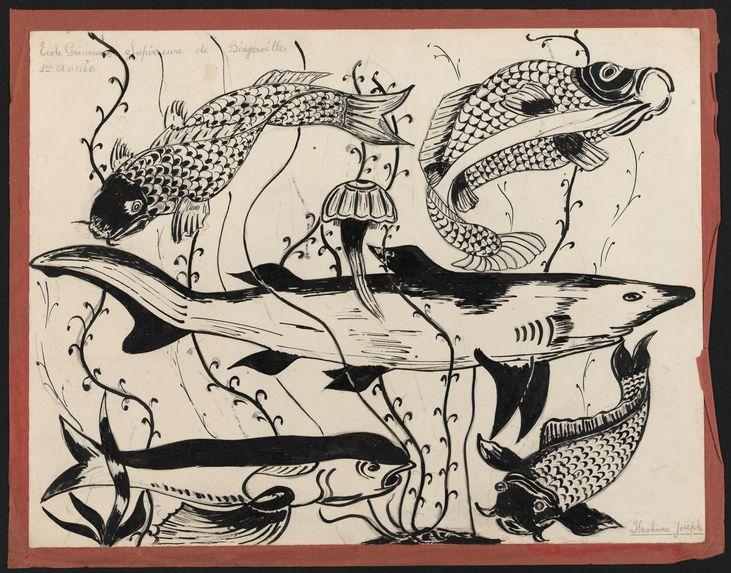 Sans titre [Ensemble de poissons, fonds sous-marin]