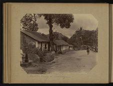 Route de Kandy à Péradénya