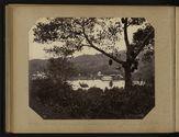 Kandy - Vue sur le lac près de la route inférieure. Jacquier et ses fruits.