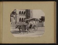 Bullock Cart, voiture à boeufs