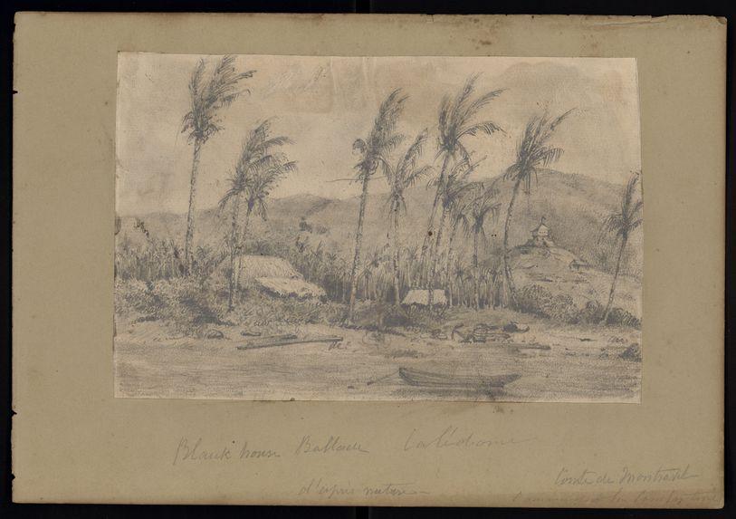 Recto : Blauk house ballade, CalédonieVerso : Fougères de la Tasmanie (Dicksonia)