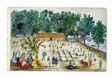 Promenade militaire autour de Papeete, 1861. Hitia