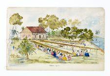 Promenade militaire autour de Papeete, 1861. Mataica