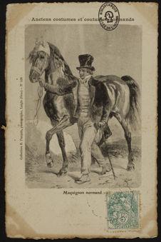 Maquignon normand