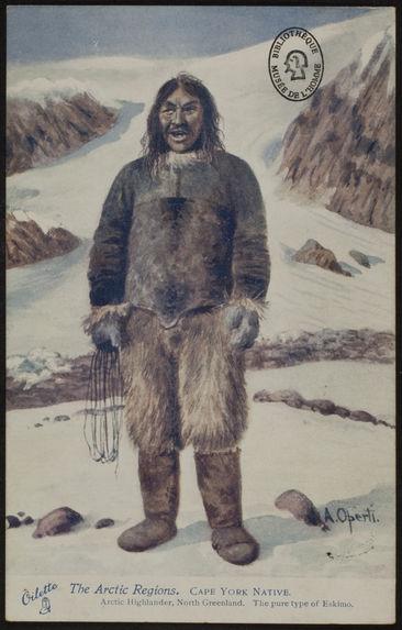 Cape York Native
