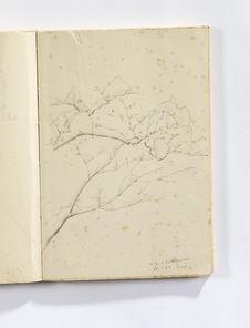 Neige à Karuizawa