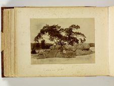 L'arbre aux fétiches, le rocher fétiche Locré