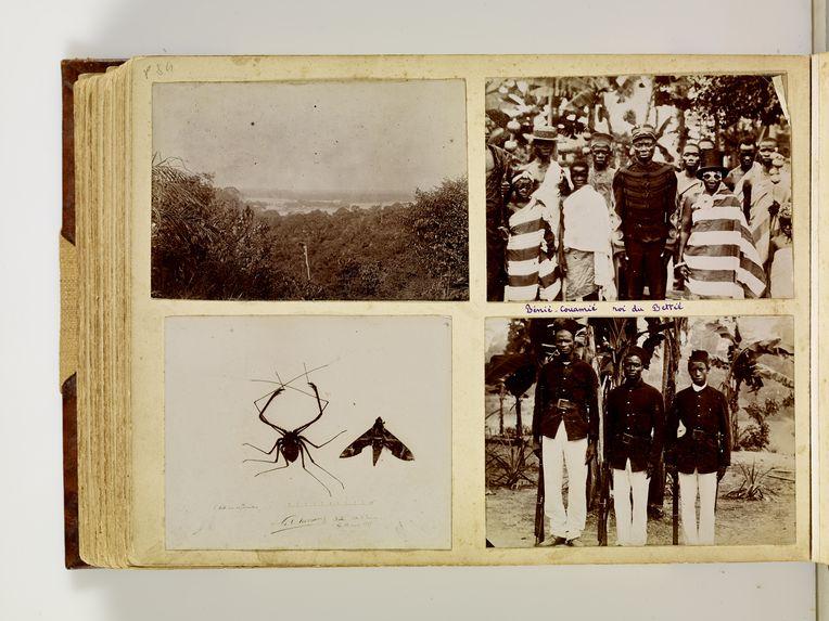 Bettié, 13 mars 1897 [une araignée et un papillon]