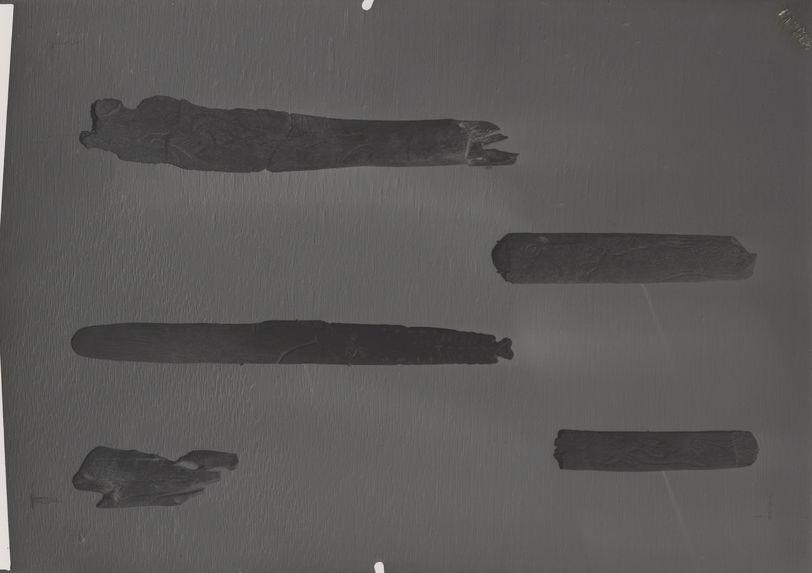 Gravures magdaléniennes sur os: cervidés, chevaux