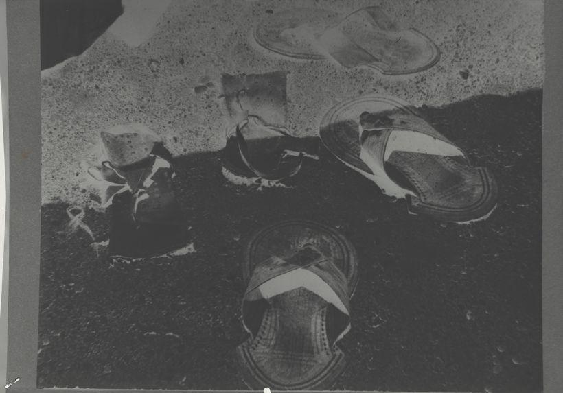 Spécimens de sandales