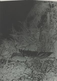 Mode de sépulture des Guaraounos : leurs cercueils