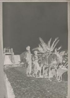Palmeraie. Puits à traction animale à Beni Isguen