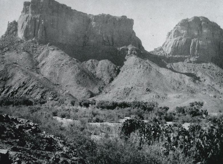 La palmeraie de Tezahan