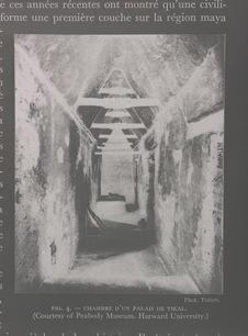 Sans titre [Chambre d'un palais de Tikal]