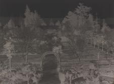 Sans titre [Jardin]