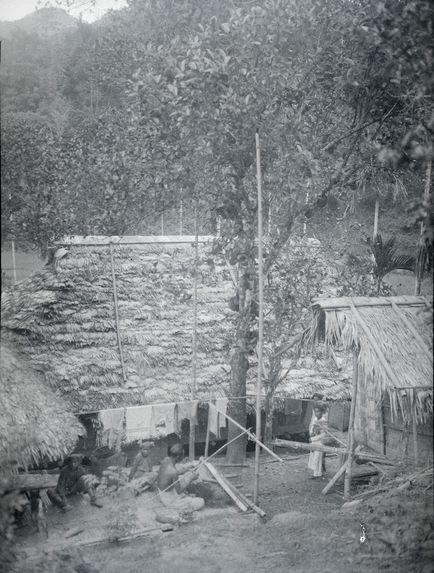 Bambous retenant le toit de la maison