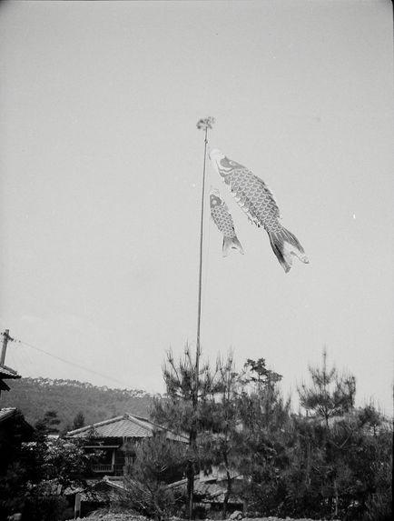 Sans titre [poissons décoratifs devant un bâtiment]