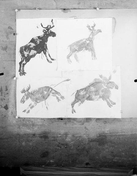 Sans titre [dessins représentant des rennes]