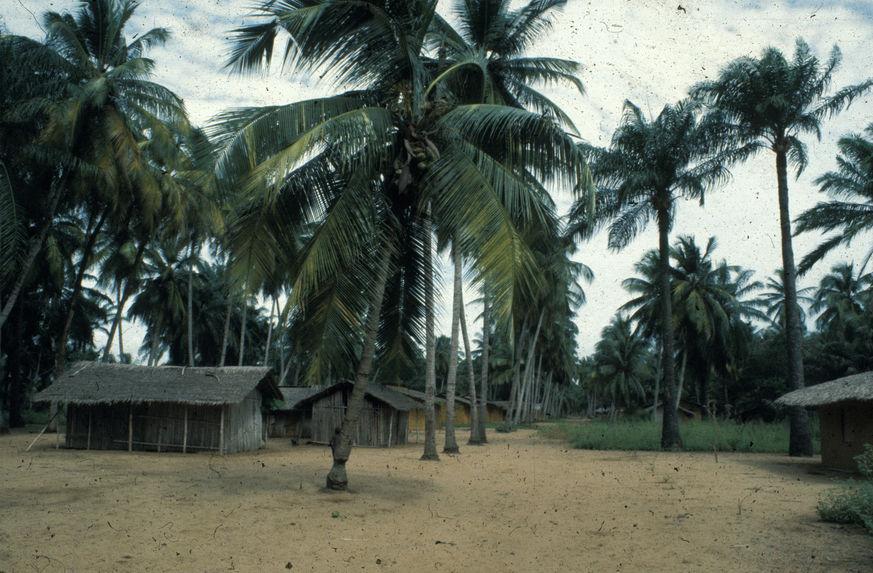 Sans titre [vue du village]