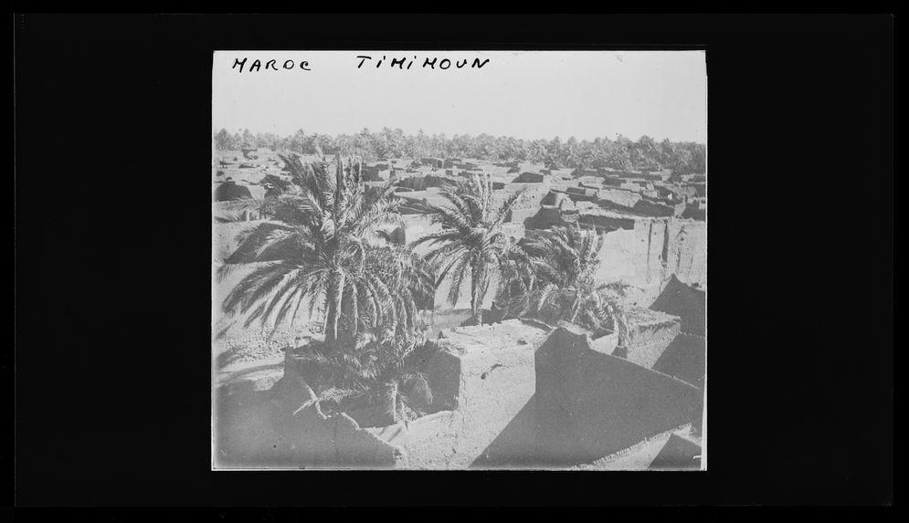 Sans titre [palmiers et constructions]