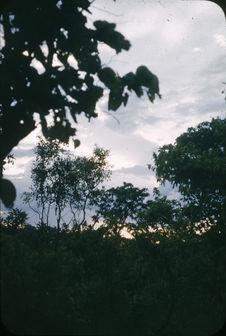 Coucher de soleil, Oubangui