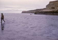 Terre de Feu. Punta Catalina. Détroit de Magellan. Annette Emperaire