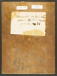 Photographie du verso du daguerréotype n°PM000133 : Soumali avec ses armes