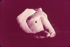 Tête d'éléphant. Terre cuite. Fragment