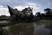 Habitation Batak