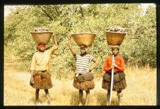 Femmes revenant de la pêche aux huitres.