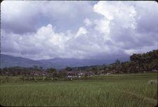 Sans titre [vue sur une rizière et un village]