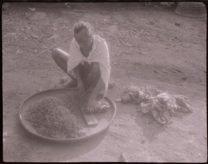 Bande-film de 6 vues concernant les Mnong Gar pendant les semailles du paddy