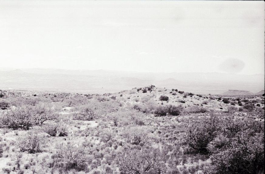 Sans titre [paysages avec cactus]
