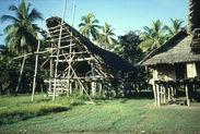 Kambot ; Sepik ; Keram ; Maison des hommes en construction