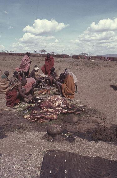 Sans titre [groupe d'hommes maasaï à proximité de morceaux de viande]