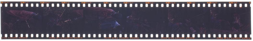 Bande film de six vues concernant des Maasaï lors d'une cérémonie