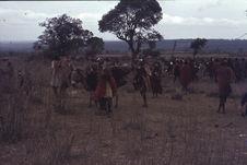 Sans titre [groupe de Maasaï accompagnés d'ânes portant une charge]
