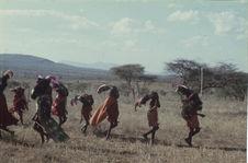 Sans titre [jeunes hommes maasaï parés de coiffes en plumes d'autruche]