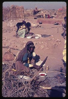 Rajasthan : Kalbeliya