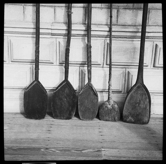 Quatre pelles de tarodières