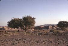 Route de Turba