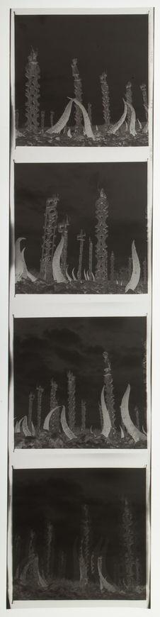 Sans titre [bande film de quatre vues : poteaux sculptés et cornes]